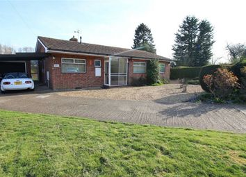 3 bed detached bungalow for sale in Claytons Way, Huntingdon PE29