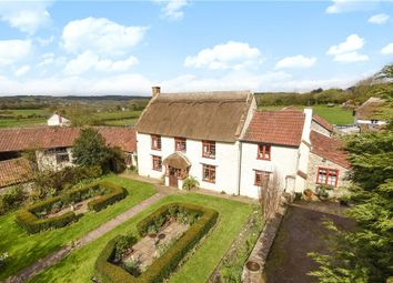 Thumbnail 5 bedroom detached house for sale in Newtown, Buckland St. Mary, Chard, Somerset