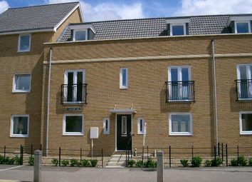 Thumbnail 5 bedroom detached house to rent in Silver Hill, Hampton Centre, Peterborough