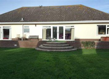 Thumbnail 3 bed detached bungalow for sale in Green Lane, Bempton, Bridlington