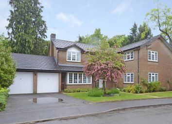 Thumbnail 5 bedroom detached house to rent in Vaillant Road, Weybridge