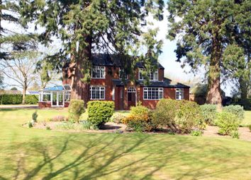 Thumbnail 4 bedroom detached house to rent in Kirtling Road, Newmarket