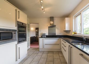 Thumbnail 2 bedroom bungalow for sale in Dalchreichart, Glenmoriston, Inverness, Highland