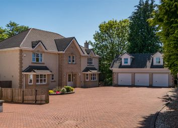 Thumbnail 6 bed detached house for sale in Carronvale Road, Larbert