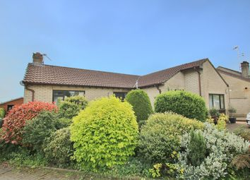 Thumbnail 2 bed bungalow to rent in Michaels Way, Sling, Coleford