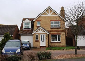 Thumbnail 4 bed detached house for sale in Tasmania Way, Eastbourne