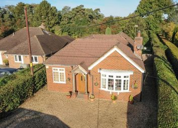 Thumbnail 4 bedroom bungalow for sale in Medstead, Alton, Hampshire