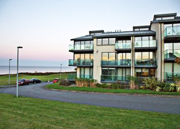 Thumbnail 1 bed apartment for sale in 26 Kittiwake, Barnageeragh, Skerries, South Dublin, Leinster, Ireland