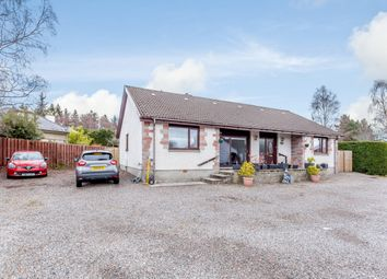 Thumbnail 4 bed detached bungalow for sale in Great North Road, Muir Of Ord, Highland