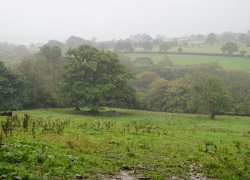 Thumbnail Land for sale in Tegryn, Llanfyrnach