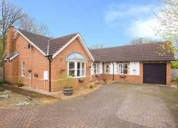 Thumbnail 4 bed detached bungalow for sale in Randalls Walk, Bricket Wood, Hertfordshire