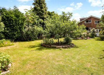 Thumbnail 5 bed detached bungalow for sale in Avenue Road, Cranleigh, Surrey