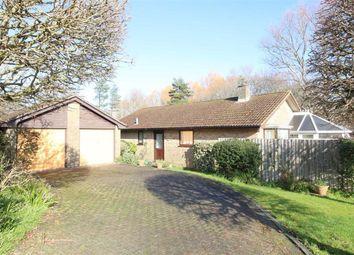 3 bed detached bungalow for sale in Glenavon, New Milton BH25