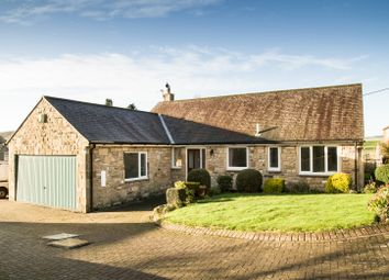 Thumbnail 3 bed bungalow to rent in 4 West Farm Court, Wall, Northumberland