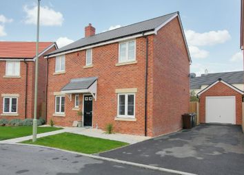 Thumbnail 4 bed detached house for sale in Stirrup Way, Andover