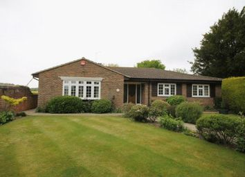 Thumbnail 4 bed bungalow to rent in Horndean Road, Emsworth