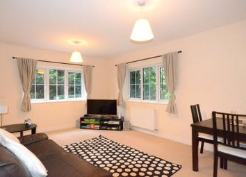Thumbnail 4 bedroom flat for sale in Laneside Court, West Ham Lane, Basingstoke