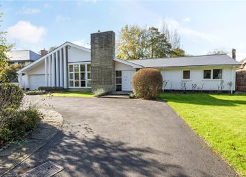 Thumbnail 6 bed detached bungalow for sale in Chauntry Road, Maidenhead, Berkshire