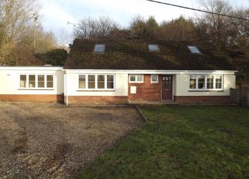 Thumbnail 4 bed property to rent in ., Ringwood