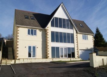 Thumbnail 5 bed property to rent in Porthyrhyd, Carmarthen