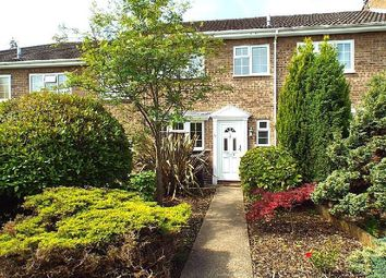 Thumbnail 3 bed terraced house to rent in Regency Drive, West Byfleet, Surrey