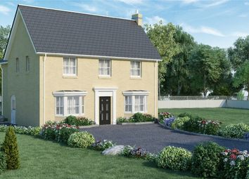 Thumbnail 4 bed detached house for sale in Bluntisham Road, Colne, Huntingdon