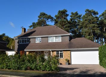 Thumbnail 4 bed detached house for sale in Hillsborough Park, Camberley, Surrey
