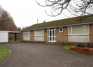 Thumbnail 3 bedroom detached bungalow to rent in Lutterworth Road, Walcote, Lutterworth