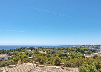 Thumbnail 3 bed apartment for sale in 07015, Palma, Spain