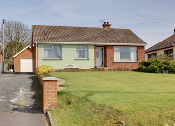 Thumbnail 3 bed detached bungalow for sale in Main Road, Portavogie
