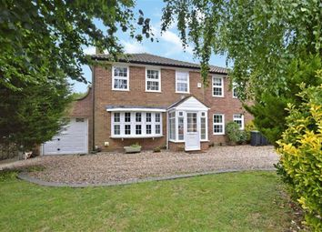 Thumbnail 4 bed detached house to rent in Theydon Place, Epping