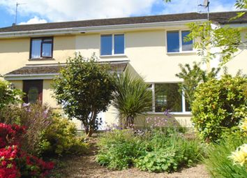 Thumbnail 3 bed detached house to rent in St. Michaels Terrace, South Brent