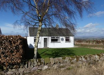 Thumbnail 3 bed cottage for sale in West Kinnochtry, Blairgowrie