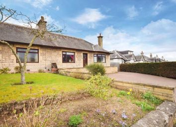 Thumbnail 3 bed bungalow for sale in 82 Angus Road, Scone, Perthshire