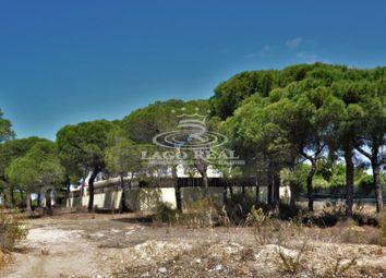 Thumbnail Land for sale in Quinta Do Lago, Central Algarve, Portugal