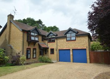 Thumbnail 5 bedroom detached house for sale in Japonica Close, Wokingham