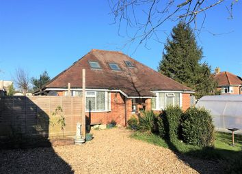Thumbnail 4 bed detached bungalow for sale in Downside Avenue, Findon Valley, Worthing
