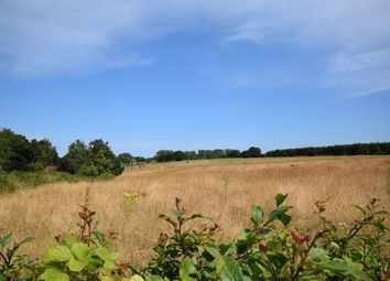 Thumbnail Land for sale in The Hill, Ranworth, Norwich