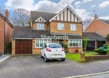 Thumbnail 4 bedroom detached house to rent in Crabtree Walk, Broxbourne, Hertfordshire