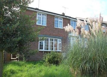 Thumbnail 4 bed semi-detached house to rent in Avon Way, Colchester