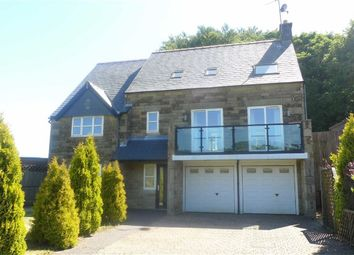 Thumbnail 5 bed detached house for sale in Burbage Heights, Buxton, Derbyshire