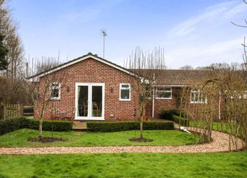 Thumbnail 3 bed detached bungalow for sale in Vicarage Road, Lover, Salisbury
