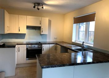 Thumbnail 3 bedroom bungalow to rent in Brampford Speke, Exeter
