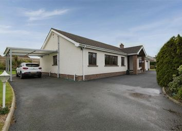 Thumbnail 3 bedroom detached bungalow for sale in Moy Road, Portadown, Craigavon, County Armagh