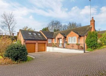 Thumbnail 4 bed detached bungalow to rent in Farebrother Close, Byfield, Daventry