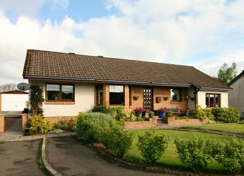 Thumbnail 4 bed detached bungalow for sale in Castlehill Court, Symington