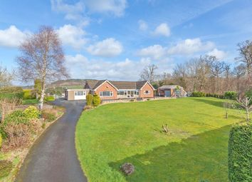 Thumbnail 3 bed detached bungalow for sale in Hospital Road, Builth Wells