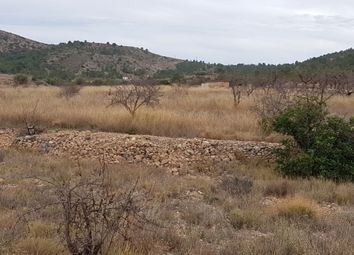 Thumbnail Land for sale in La Romana, Spain