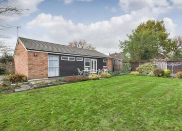 Thumbnail 2 bed bungalow to rent in Elmslie Close, Epsom