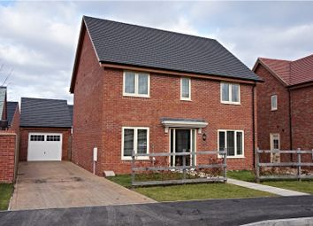 Thumbnail 4 bedroom detached house for sale in Hobby Drive, Corby